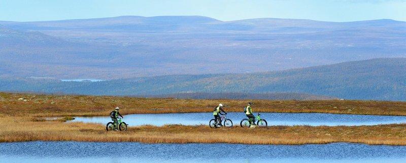 Västerbotten, Sorsele, fat bike tours