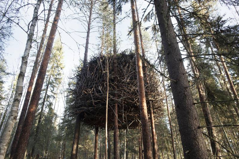 Treehotel in Harads, Lapland