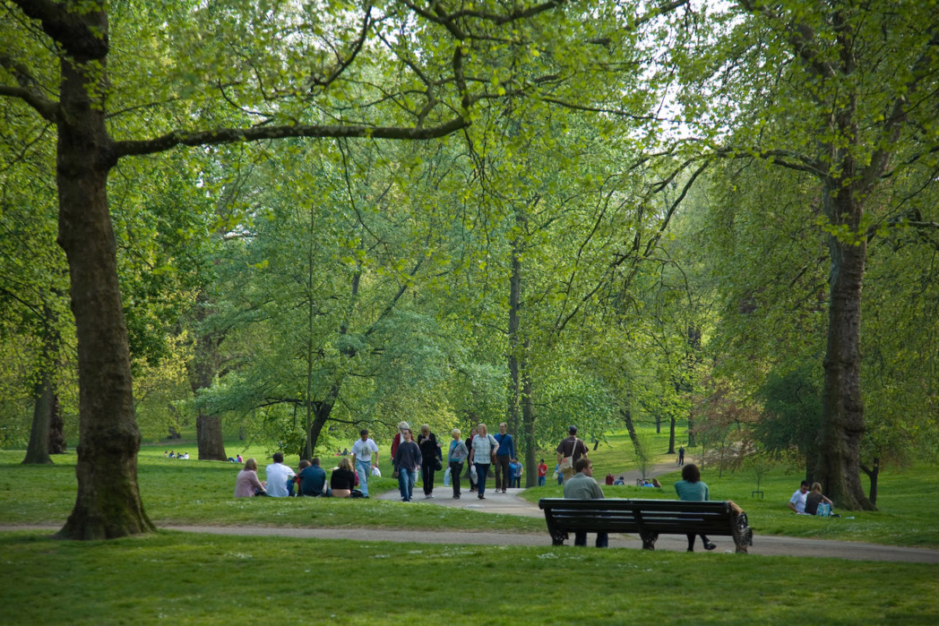 A Retrospective in the Park