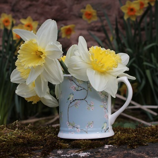 blue tit and blossom china mug and daffodills