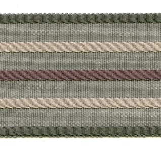 Fletcher wide braid in juniper colour haberdashery