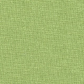kiwi green colour plain solo window roller blind for kitchens or bathrooms