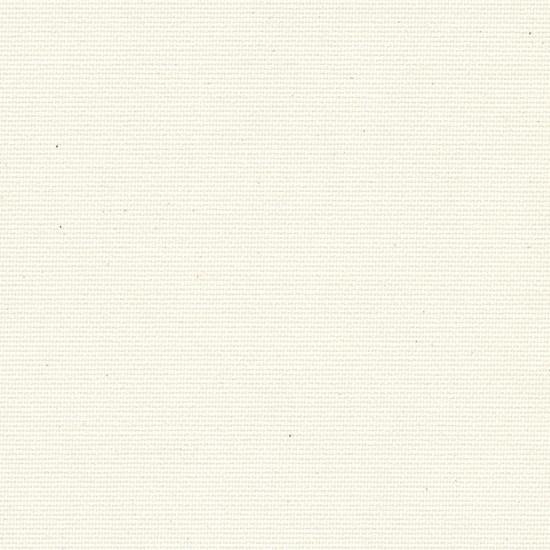 canvas - snow white