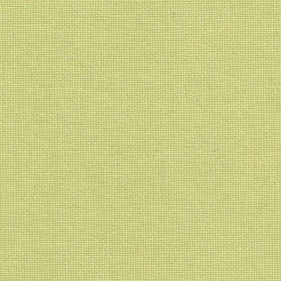 canvas - celery