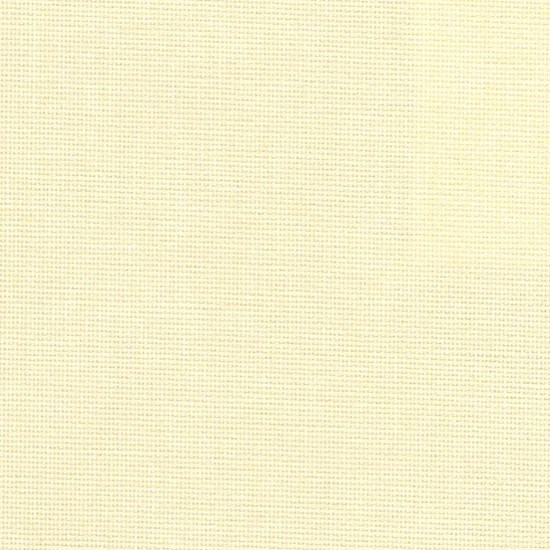 canvas - custard cream