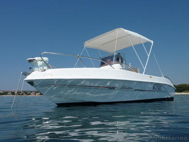 Rental motorboat Bluline 19 Open in Pula - Istria