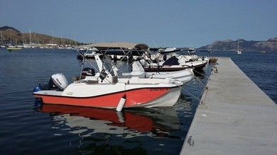 Charter motorboat V2 Sargantana in Port de Pollensa - Majorca (Balearic Islands)