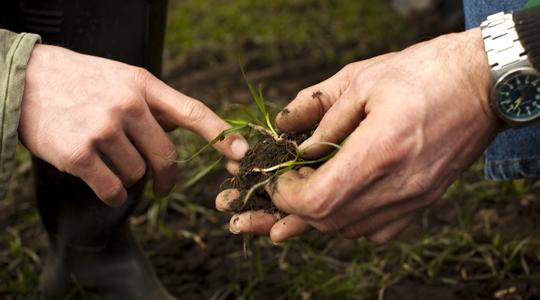 Reduceret Carbon Footprint