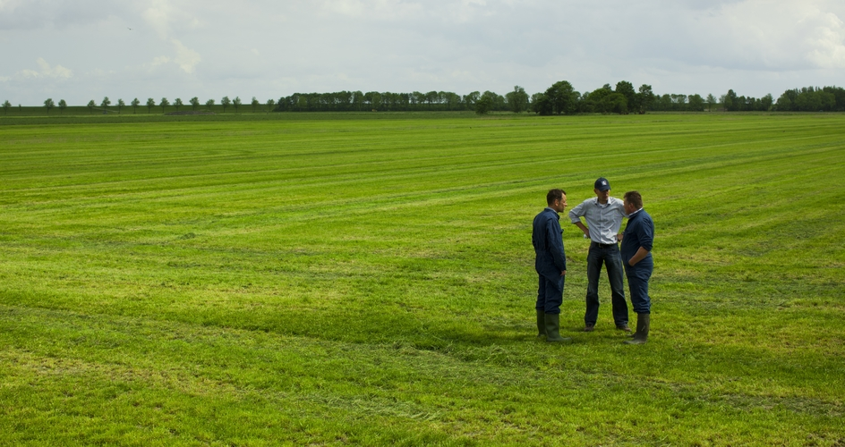 Benefit from applying lime to grassland