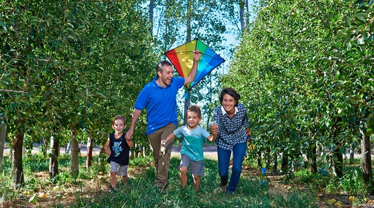 Family with kite in orchard