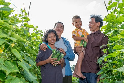 Family with good cucumber harvest, Asia
