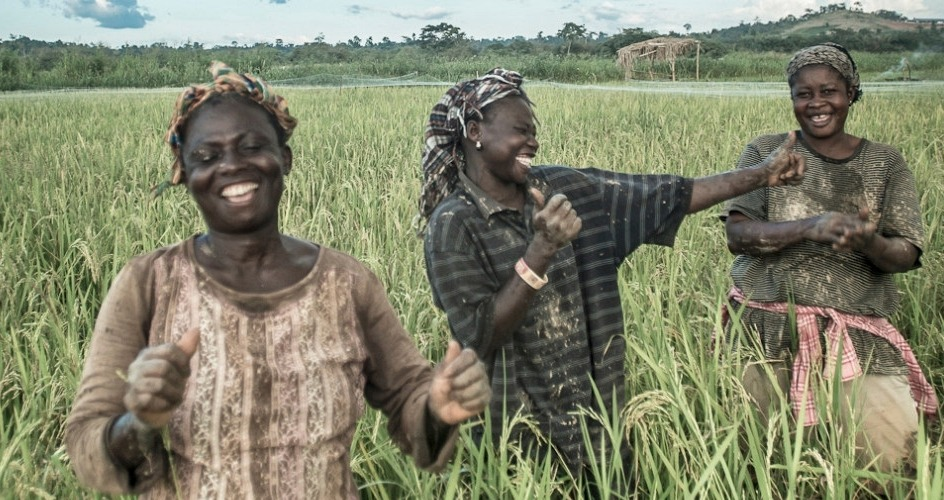 Farmers in Africa