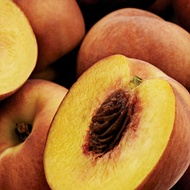 Managing Stone Fruit Firmness