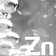 Role of Zinc