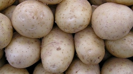 How to reduce internal spotting in potatoes