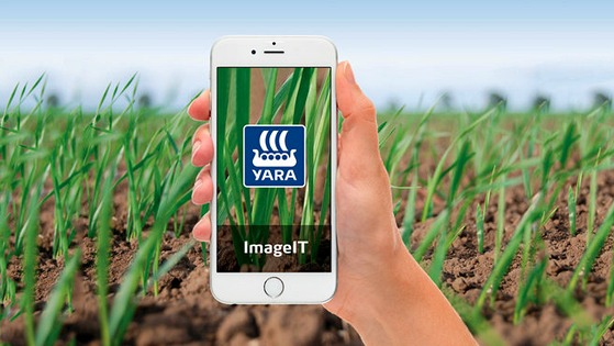 Yara ImageIT for Cereals