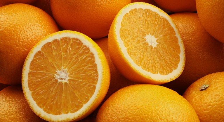 citros nutrição de plantas