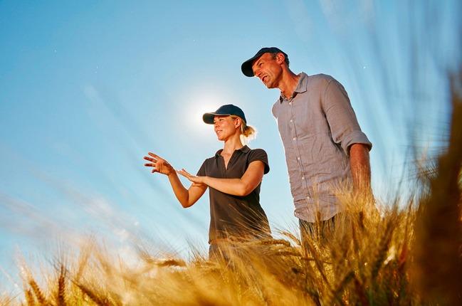 Farmers in barley field