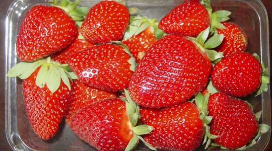 How to improve strawberry fruit quality