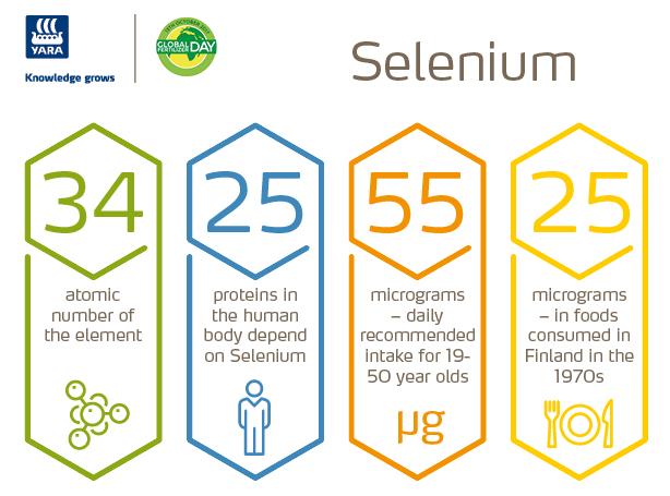 Selenium infographic