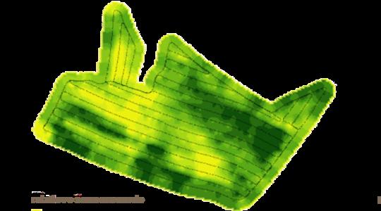 Karta biomassa