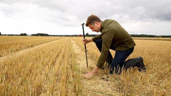 Time for soil analysis - measure to manage
