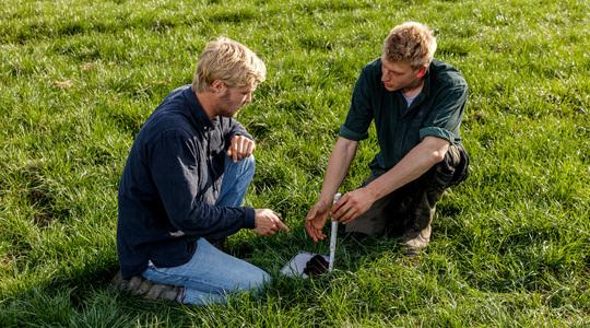 Onze kennis van grasland