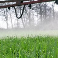 El efecto de azufre en la calidad de las praderas