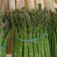 Asparagus Crop Programme