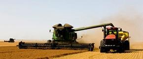 Yara Harvesting