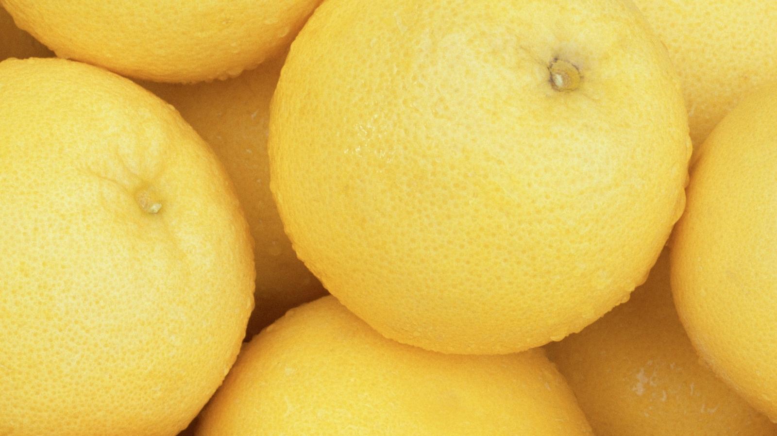 Citrus Crop Nutrition
