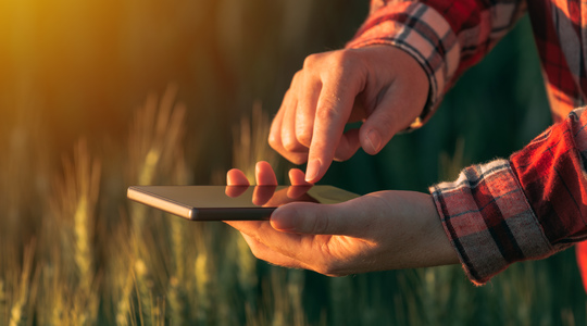 Hands holding a smart phone out in the field at sunset