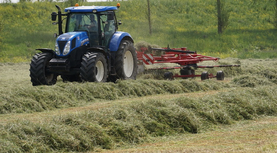 How to avoid compromising silage yield and quality following the cold wet spring