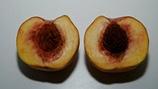 Managing Internal Breakdown of Stone Fruit