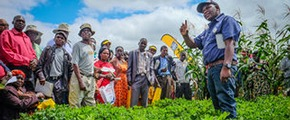 Yara acquires Greenbelt Fertilizers