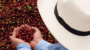 Agricultor de espaldas con sombrero
