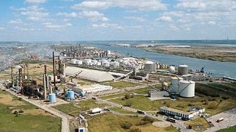 Le Havre plant