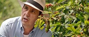 Farmer with coffee plants using Yara fertilizers for growth