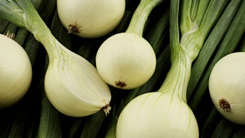 Onion & Garlic Nutrition