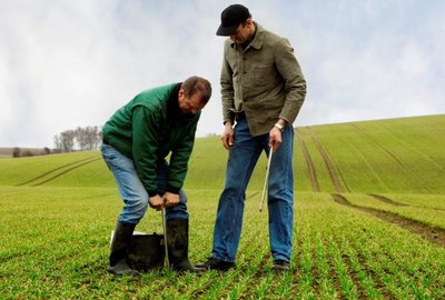 Soil analysis - to identify limiting factors