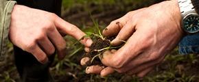 Environmental management approach