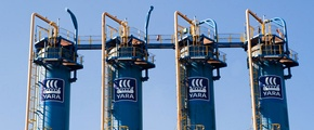 The yara share