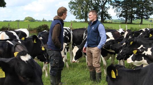 Contact Yara Ireland Crop Nutrition Team