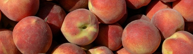 Chilean peaches