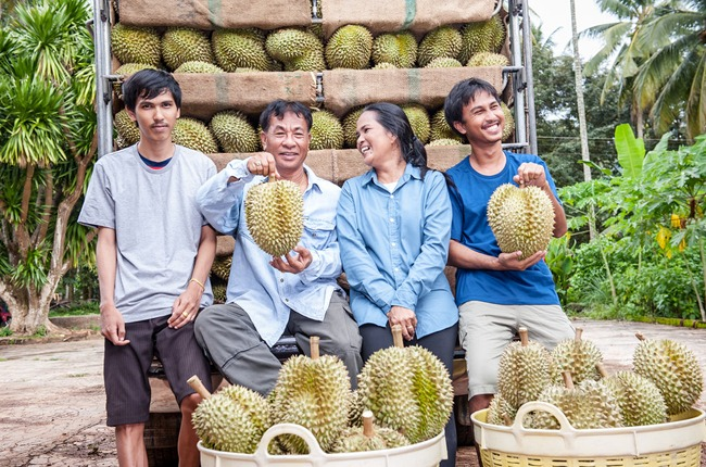 Durian farmers in Thailand with harvest