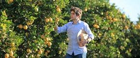 Yara Water Solution for Citrus