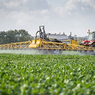 Micronutrients give oilseed a better chance