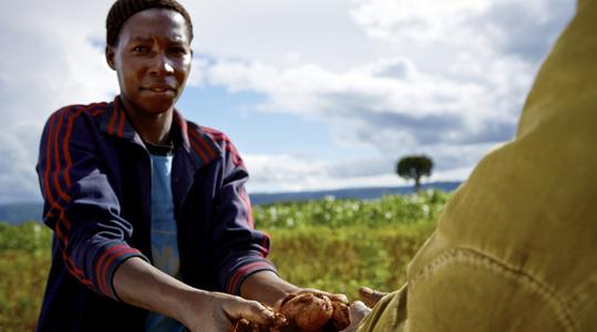 雅苒在非洲的活动