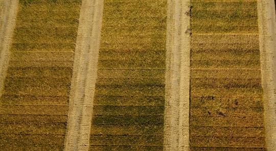 Fosforin viljavuusluvut Suomessa