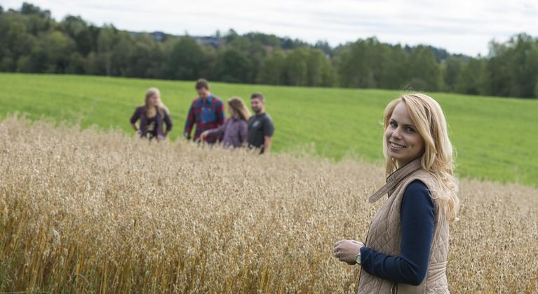 Tiltak for å forbedre avlingsutviklingen i norsk kornproduksjon
